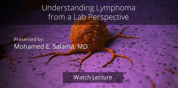 Understanding Lymphoma from a Lab Perspective by Mohamed E. Salama, MD